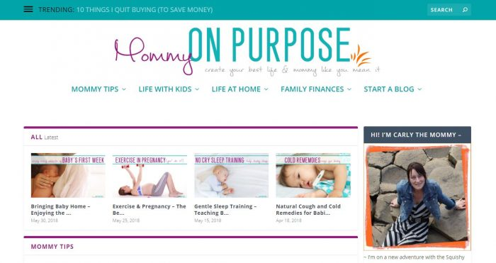 New Mom Blogs to Follow - Mommy on Purpose