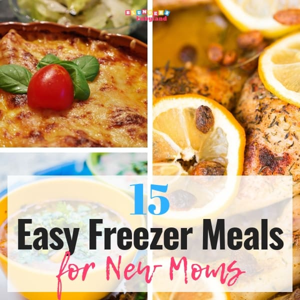 15 Easy Freezer Meals for New Moms - Freezer Meals for Busy Moms