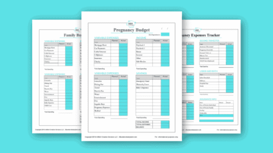 Baby Budgeting Spreadsheets Mailer Lite Image